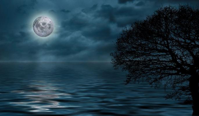night-4170013_1920